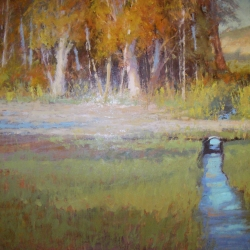 Fall in Maynard Dixion County       18 x 24  oil    Colleen Howe Bleinberger_ $3,400