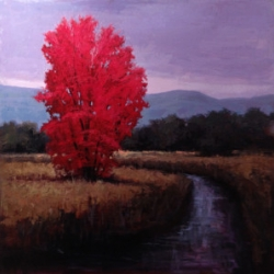 Red Tree 24x24 oil 2500_Sold