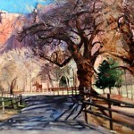 Morning Shadows 20 x 30 oil by Barbara Summers Edwards $3,500