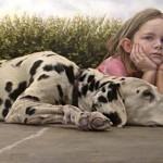 Dog Day_ 24x36 oil_ websize_ Mark B. Goodson_ NFS