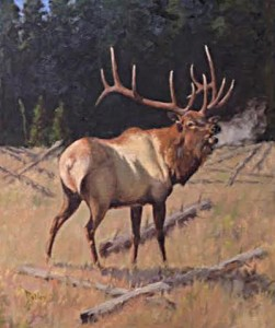 Elk At Morning Robert Betly Oil_websize_ $4500.00 - Copy