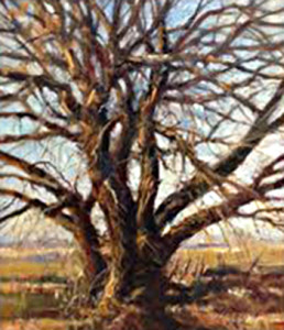 South Valley Tree Maurice Wiberg 12 x 14 Oil websize $1200.00