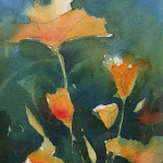 Jill's Poppies 6.5 x 4 .5 by Laura Hawley