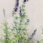 Larkspur Bouquet 10 x 6.5 by Tom Howard $600