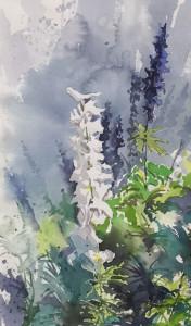 Larkspur Morning_10 x 6.5 watercolor