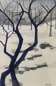 Patterns of Winter 5.5 x 8.25 watercolor by Pat Leake NFS