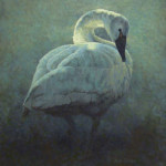 Avian Sonata by Richard K. Jolley 20 x 24 oil  priced at $3,100