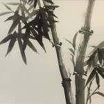 Bamboo by Eiko Anderson 12 x 17 Sumi Ink price at $800