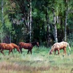 Salt River Pasture by Barbara Summers Edwards 16x20 oil priced at $2,100