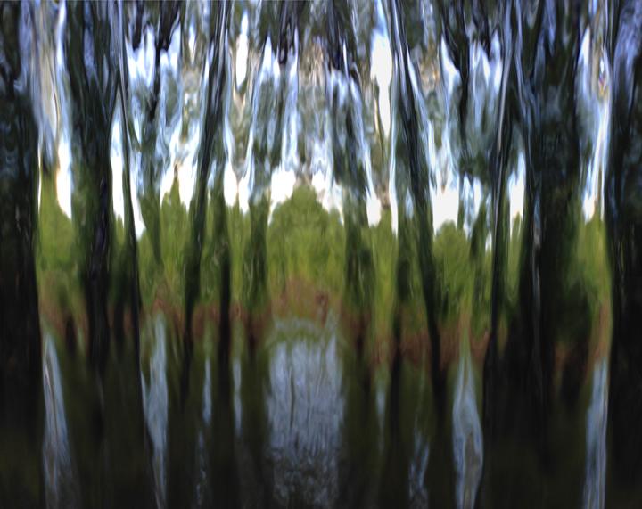 LISONBEE mixed media Untitled 24x36 $750.00